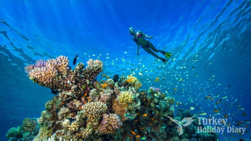 Underwater Diving Tourism in Turkey